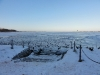 winter2011.jpg
